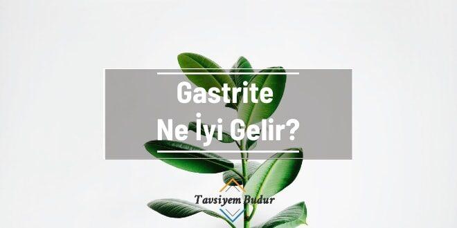 Gastrite Ne İyi Gelir